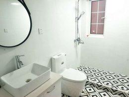 Shared Apartment Washroom