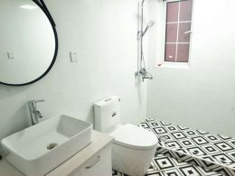 Shared Apartment Washroom