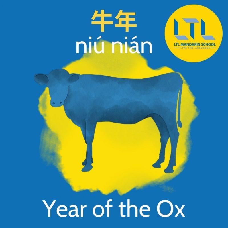 Chinese-New-Year-Beijing