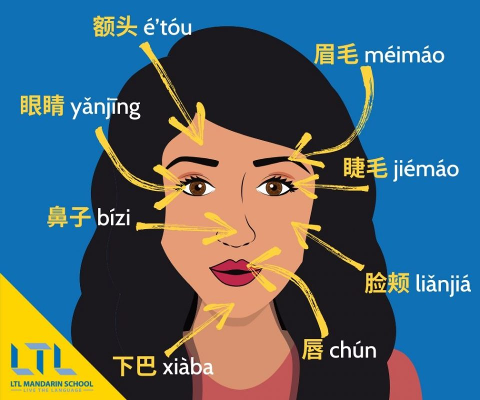 Makeup-in-Chinese-Facial-Features