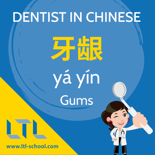 Gums in Chinese