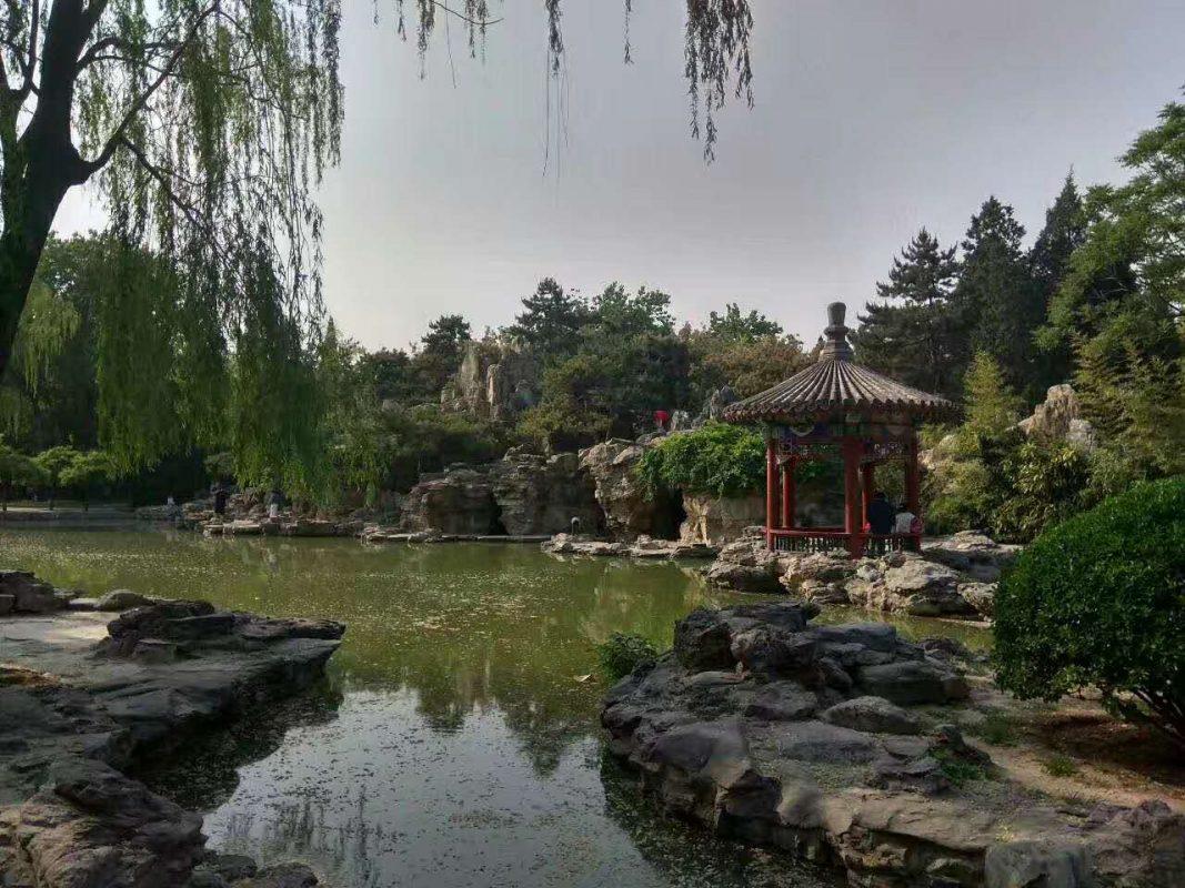 ritan-park-summer-in-beijing