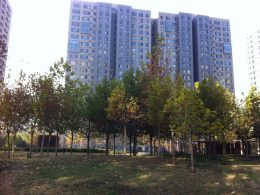 Shared Apartment residential area in Beijing